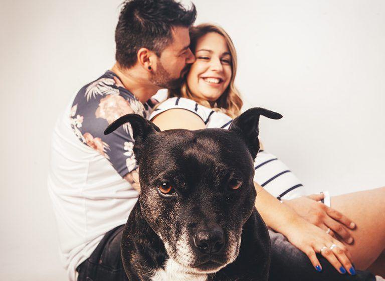 fotos de embarazada con mascota